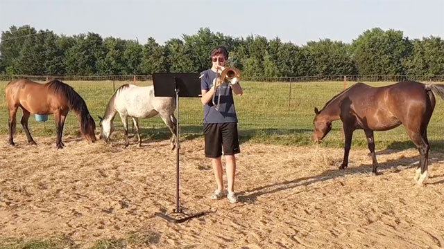 C.J. Woods plays trombone in a field with his horses.