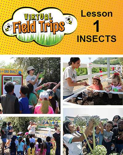 Virtual Field Trip Poster