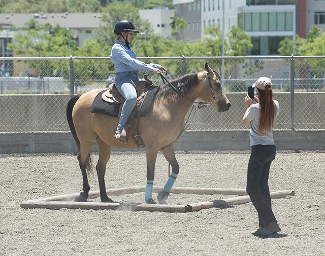 Arabian Horse Center Workshop