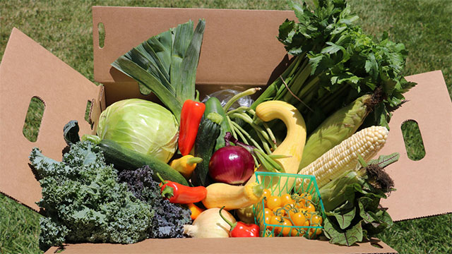 Various types of produce in a box